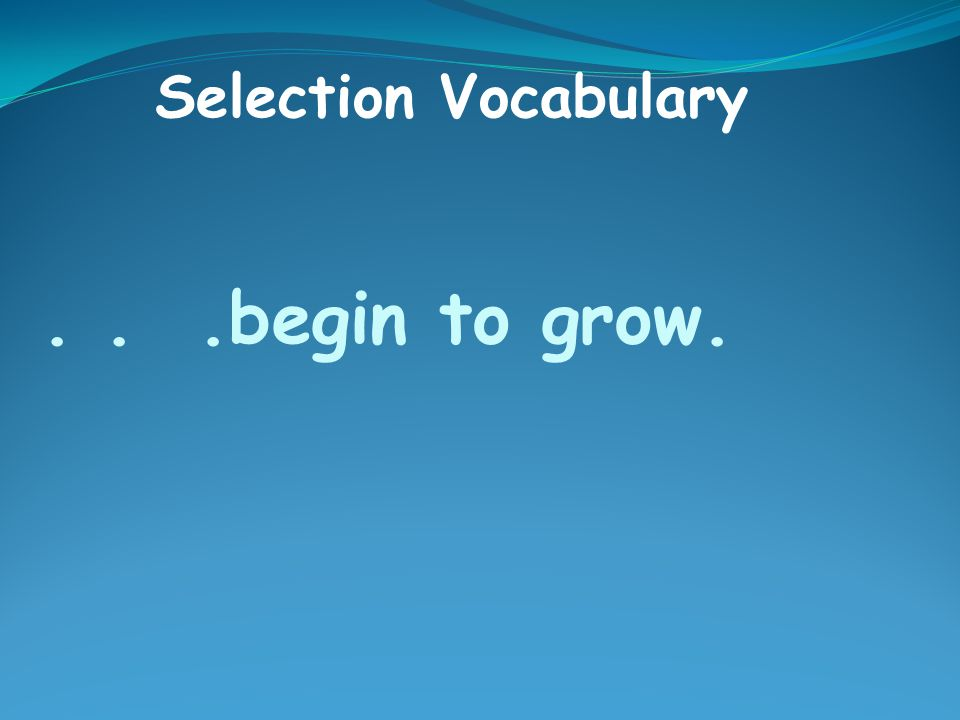 ...begin to grow. Selection Vocabulary