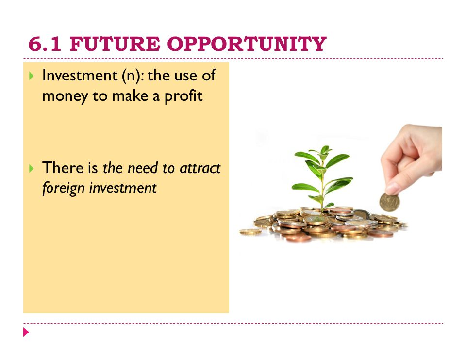 6.1 FUTURE OPPORTUNITY  Investment (n): the use of money to make a profit  There is the need to attract foreign investment