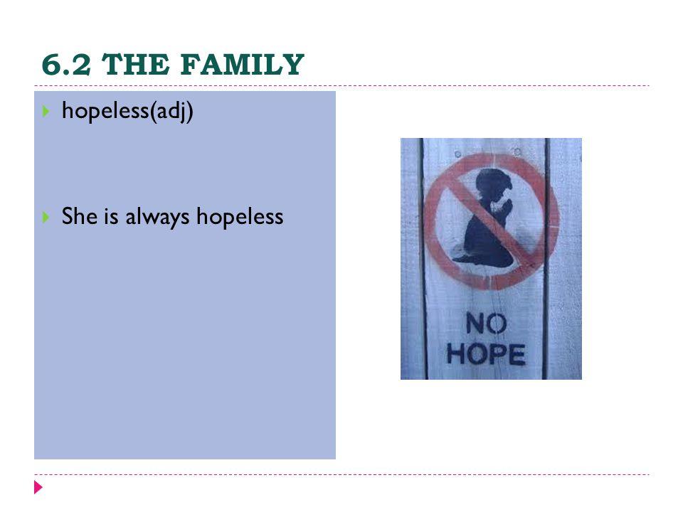 6.2 THE FAMILY  hopeless(adj)  She is always hopeless