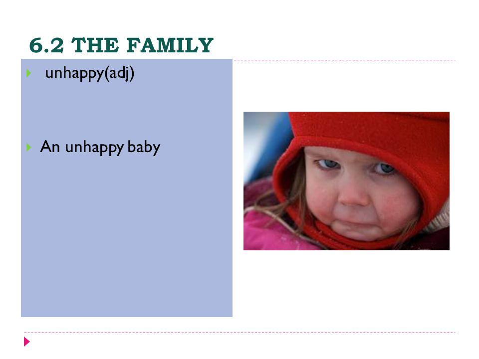 6.2 THE FAMILY  unhappy(adj)  An unhappy baby