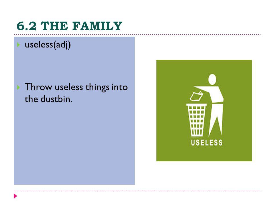 6.2 THE FAMILY  useless(adj)  Throw useless things into the dustbin.