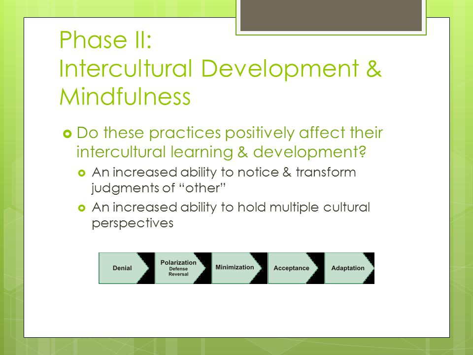Phase II: Intercultural Development & Mindfulness  Do these practices positively affect their intercultural learning & development?  An increased ab