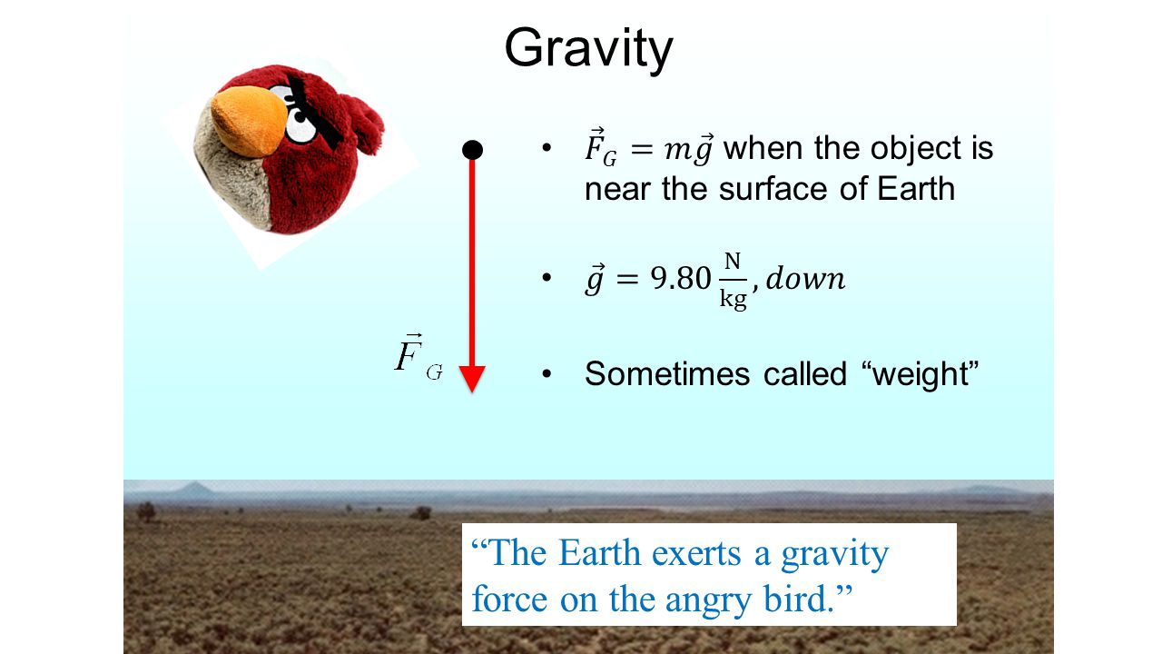 """Gravity """"The Earth exerts a gravity force on the angry bird."""""""