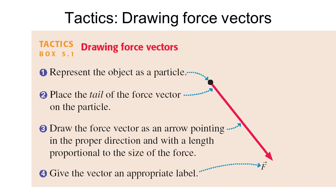 An Even Shorter Catalog of Forces The four fundamental forces in the universe are: Gravity ( F g = mg ) Electric & Magnetic Strong Nuclear – holds the nucleus together Weak Nuclear – governs beta-decay Every force you can experience is a manifestation of one or more of the above.
