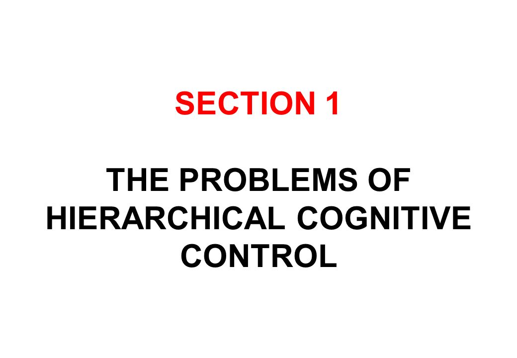 SECTION 1 THE PROBLEMS OF HIERARCHICAL COGNITIVE CONTROL