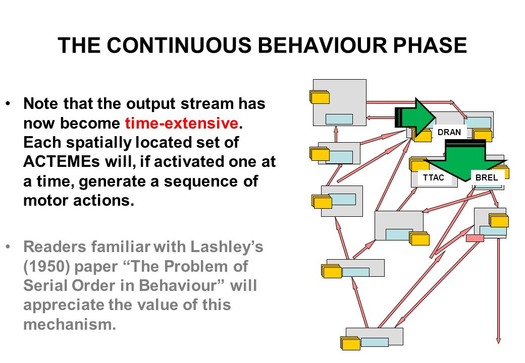 """THE CONTINUOUS BEHAVIOUR PHASE..... BREL, the Behavioural Release Module, then """"ticks these out"""" safely one by one (in the same way that biology's Ant"""