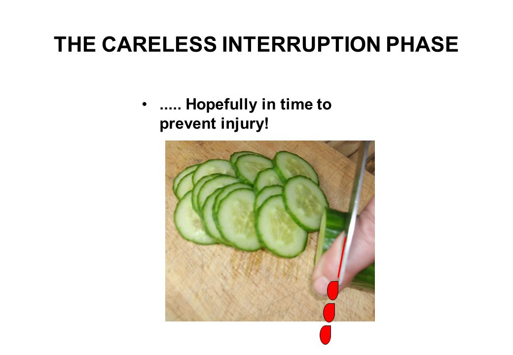THE CARELESS INTERRUPTION PHASE..... unless, part way through the slicing, an external auditory INTERRUPTION is received, whereupon REAFFERENCE sudden