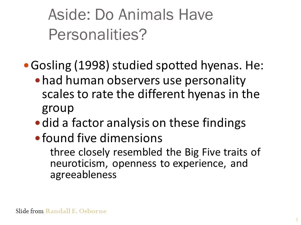 The Big Five Personality Traits Conscientiousness - dependable, organized, reliable, ambitious, hardworking, and persevering.