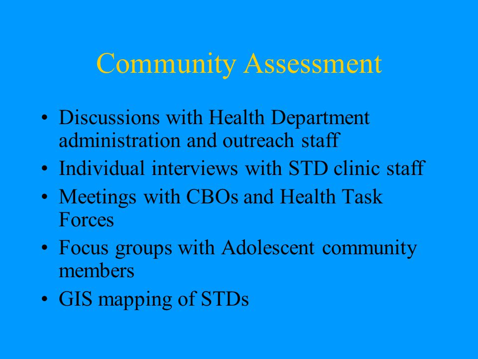 Community Assessment Discussions with Health Department administration and outreach staff Individual interviews with STD clinic staff Meetings with CBOs and Health Task Forces Focus groups with Adolescent community members GIS mapping of STDs