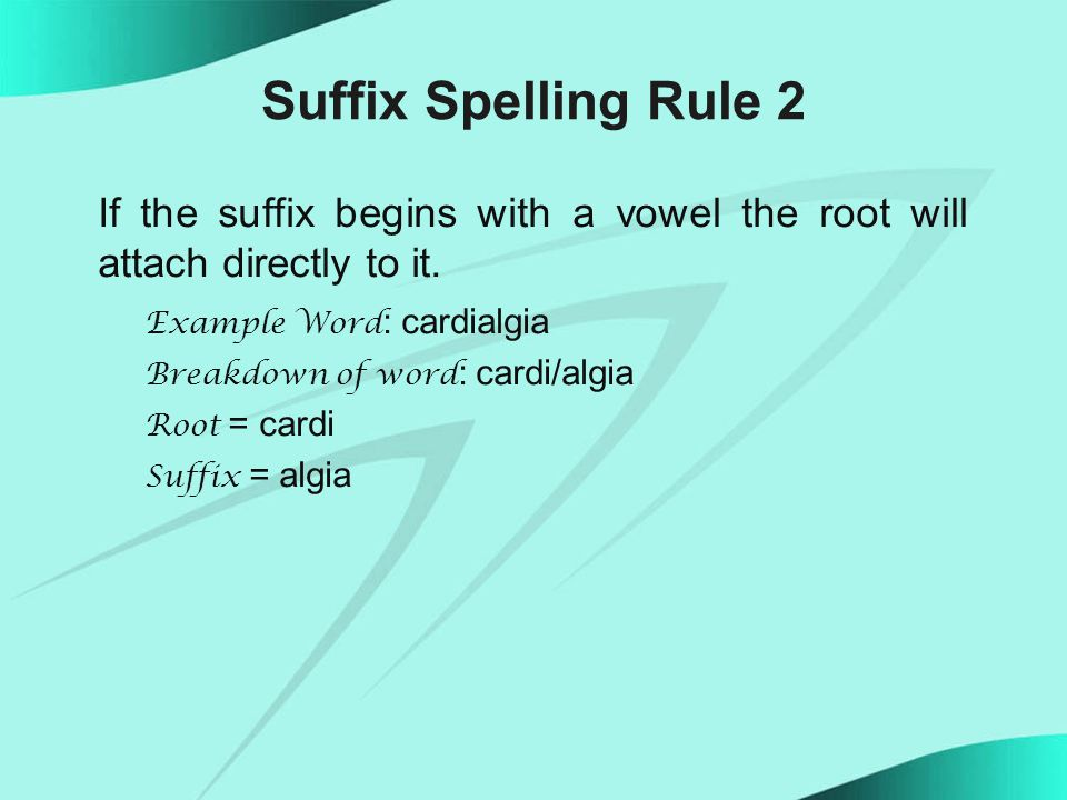 Suffix Spelling Rule 2 If the suffix begins with a vowel the root will attach directly to it.