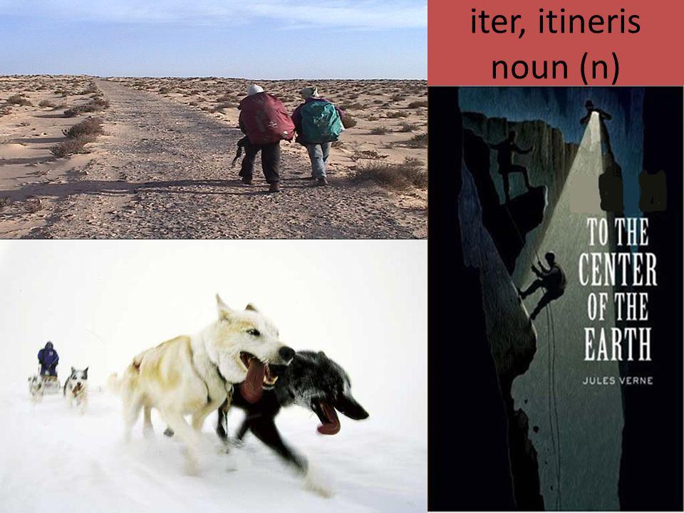 iter, itineris noun (n)