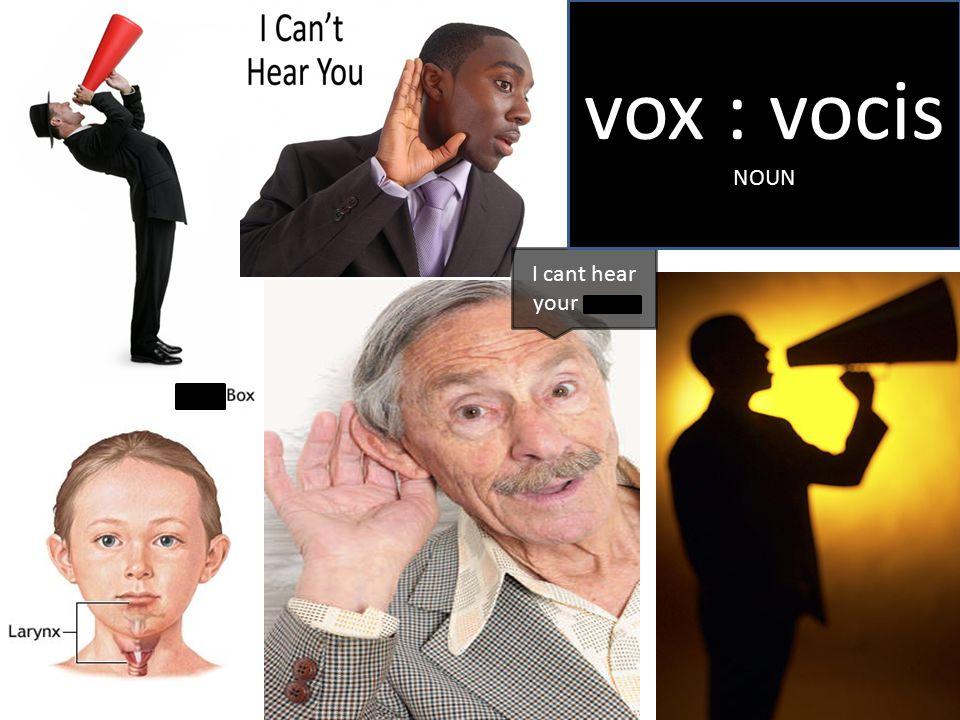 I cant hear your voice vox : vocis NOUN