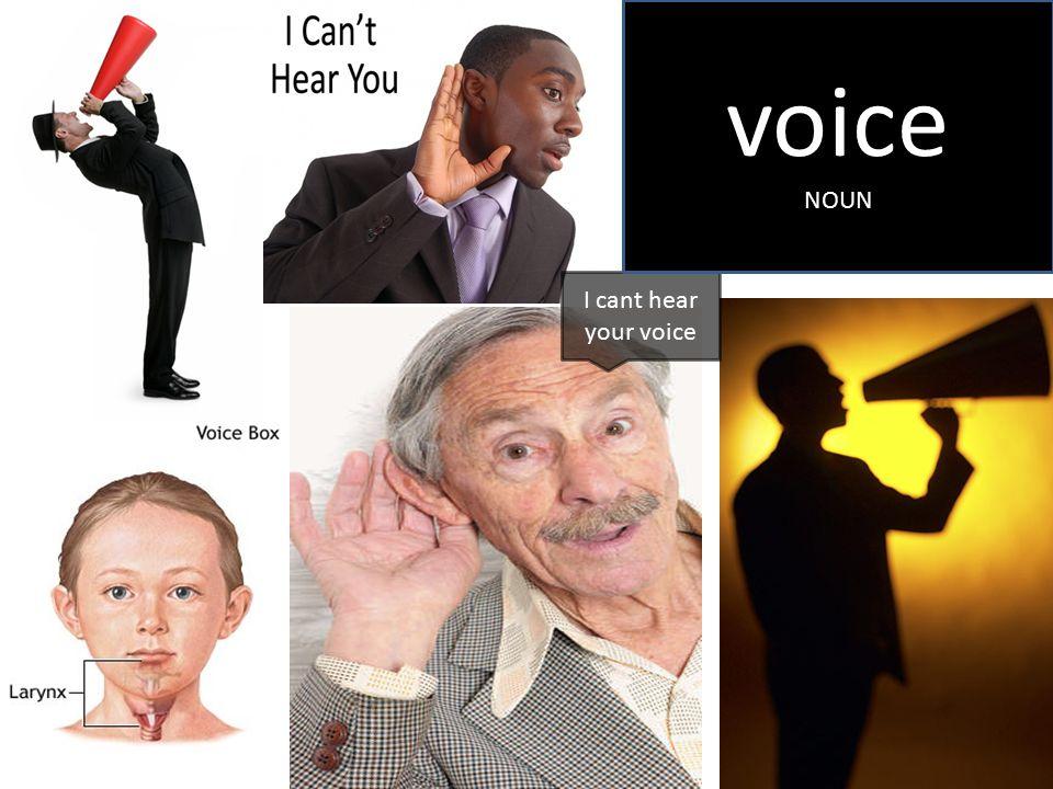 I cant hear your voice voice NOUN