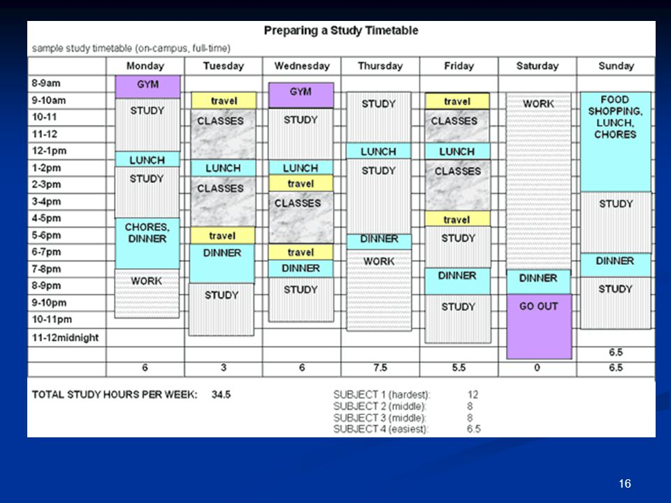 17 State Ranker's Study Schedule