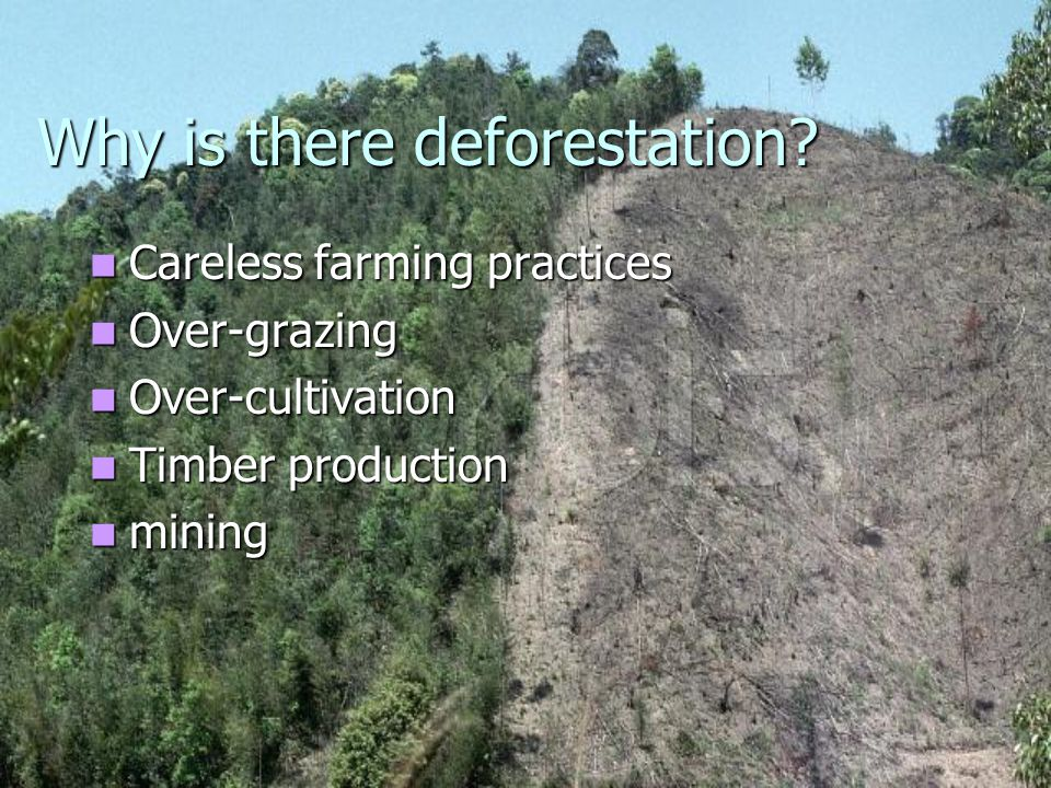 Why is there deforestation.