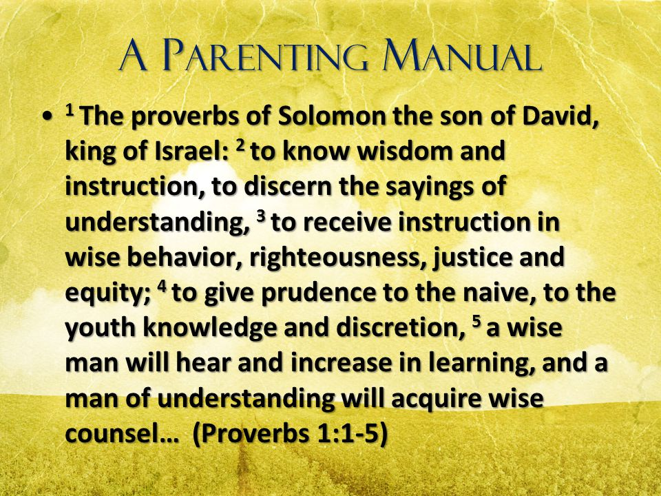 A P ARENTING M ANUAL 1 The proverbs of Solomon the son of David, king of Israel: 2 to know wisdom and instruction, to discern the sayings of understan