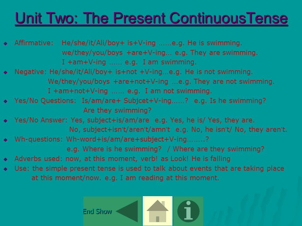 Unit Two: Language Points  Present Simple Tense Present Simple TensePresent Simple Tense  Present Continuous Tense Present Continuous TensePresent Continuous Tense  The Definite Article The The Definite Article The The Definite Article The End Show End Show