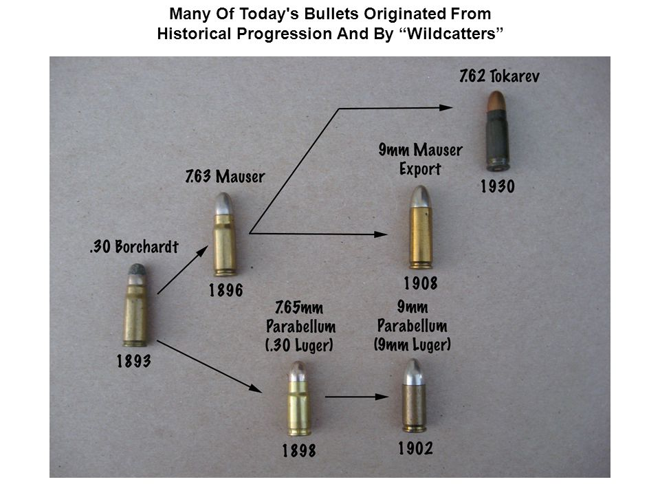 "Many Of Today's Bullets Originated From Historical Progression And By ""Wildcatters"""