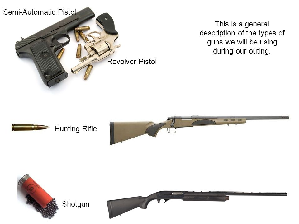 Revolver Pistol Semi-Automatic Pistol Hunting Rifle Shotgun This is a general description of the types of guns we will be using during our outing.