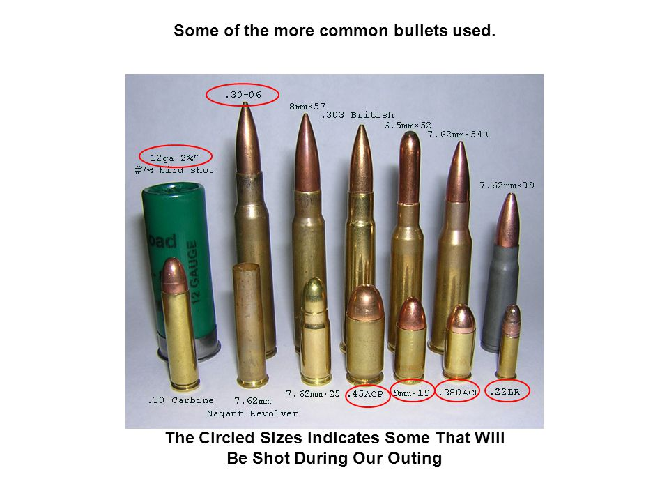 Some of the more common bullets used. The Circled Sizes Indicates Some That Will Be Shot During Our Outing