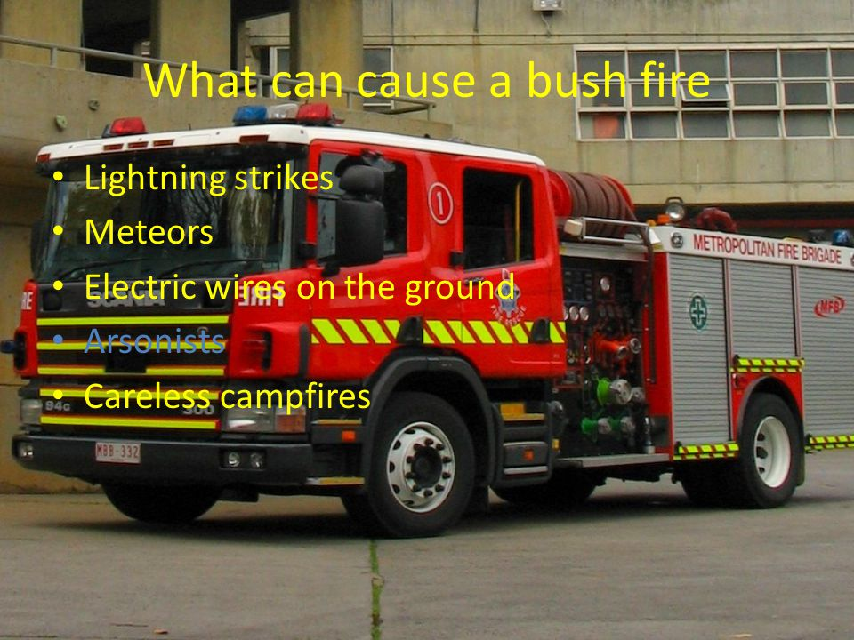 What can cause a bush fire Lightning strikes Meteors Electric wires on the ground Arsonists Careless campfires