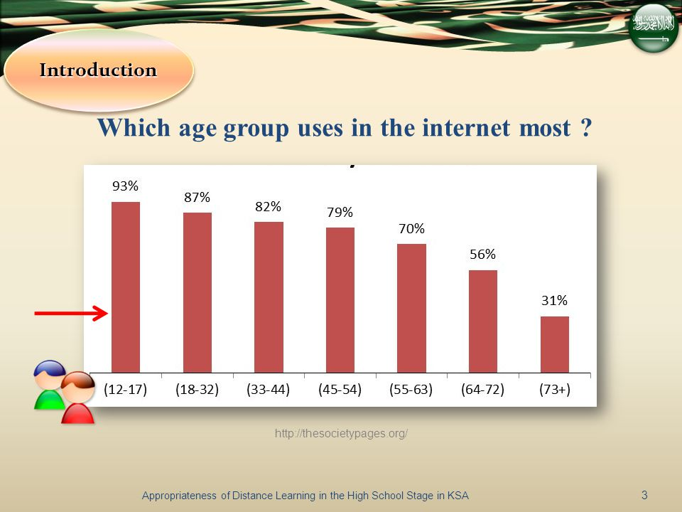 Which age group uses in the internet most .