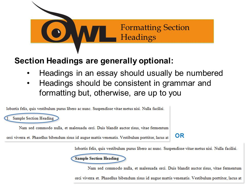 Section Headings are generally optional: Headings in an essay should usually be numbered Headings should be consistent in grammar and formatting but, otherwise, are up to you Formatting Section Headings OR
