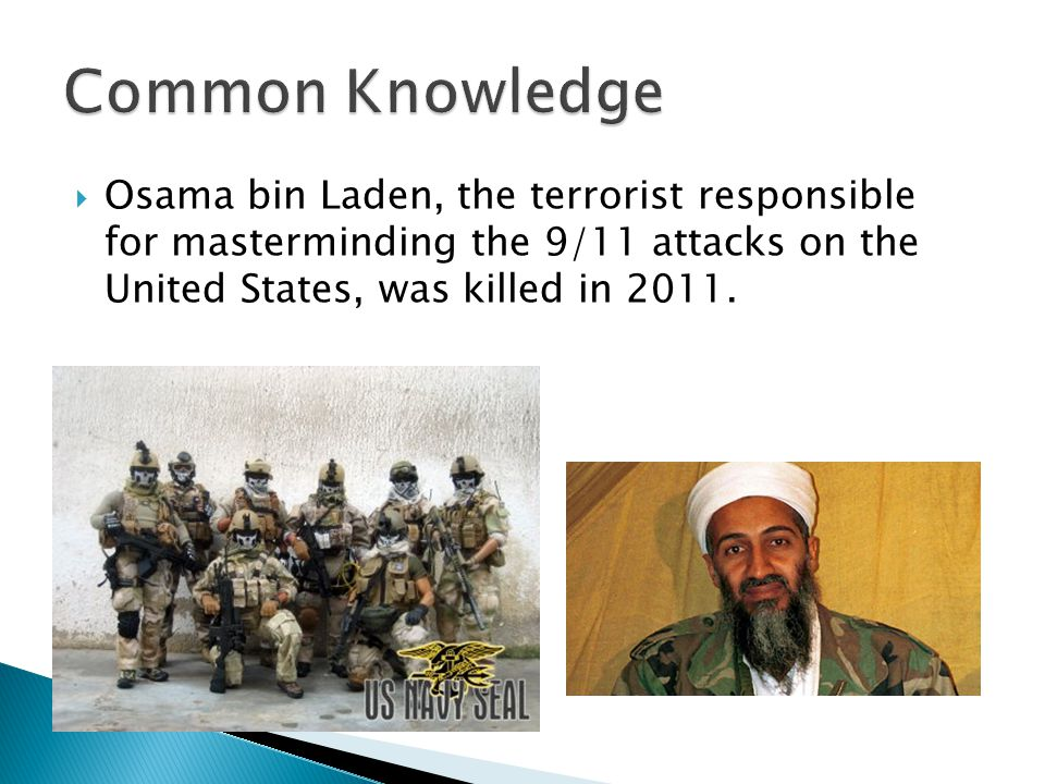  Osama bin Laden, the terrorist responsible for masterminding the 9/11 attacks on the United States, was killed in 2011.