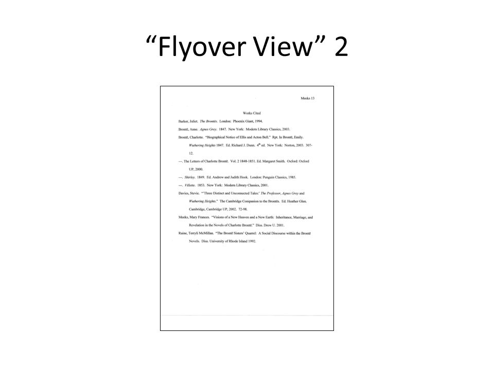 """""""Flyover View"""" 2"""