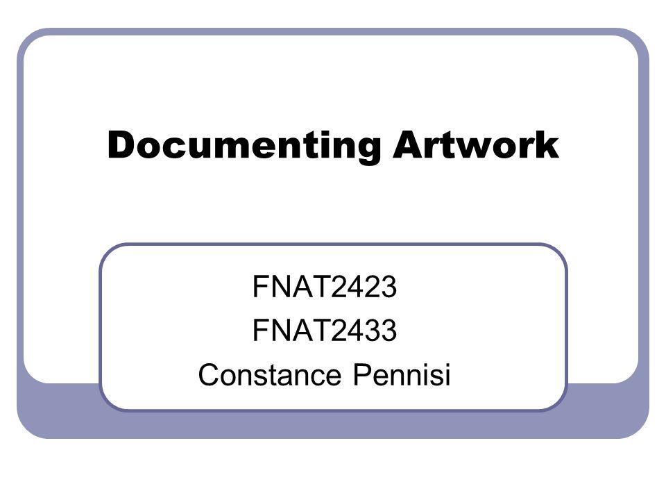 Documenting Artwork FNAT2423 FNAT2433 Constance Pennisi