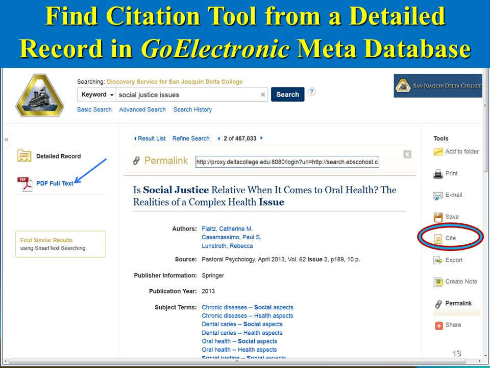 13 Find Citation Tool from a Detailed Record in GoElectronic Meta Database