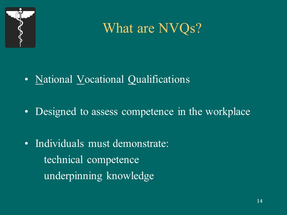 14 What are NVQs.