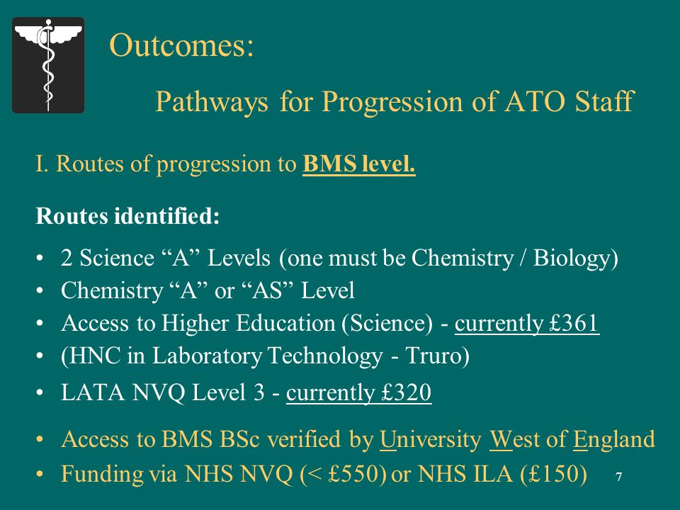 8 Outcomes: Pathways for Progression of ATO Staff II.
