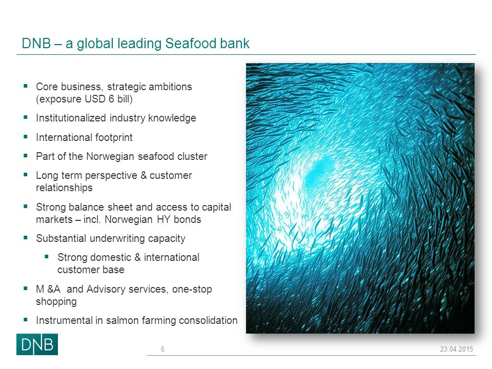 Financing Seafood – a manageable challenge  Volatility  Fragmented industry  Biological risk  Political influence on regulations & markets  Sustainability  Capital intensive Consolidation helps.
