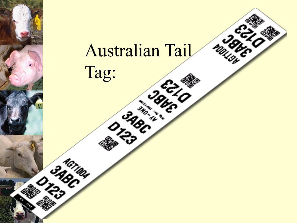 Australian Tail Tag: