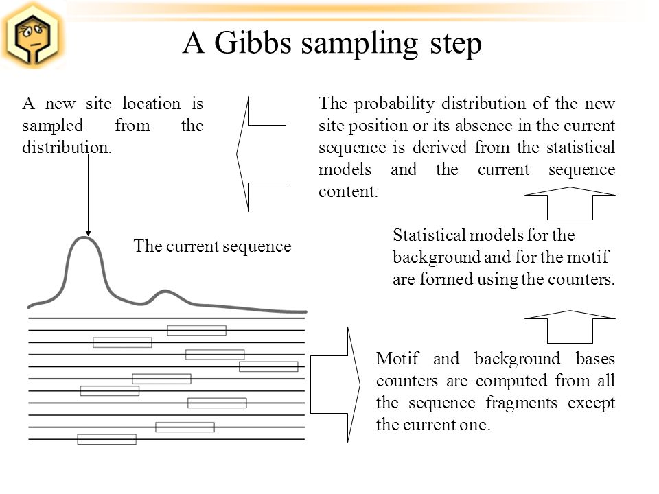 A Gibbs sampling step Motif and background bases counters are computed from all the sequence fragments except the current one. The probability distrib