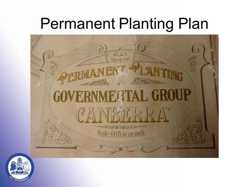 Permanent Planting Plan