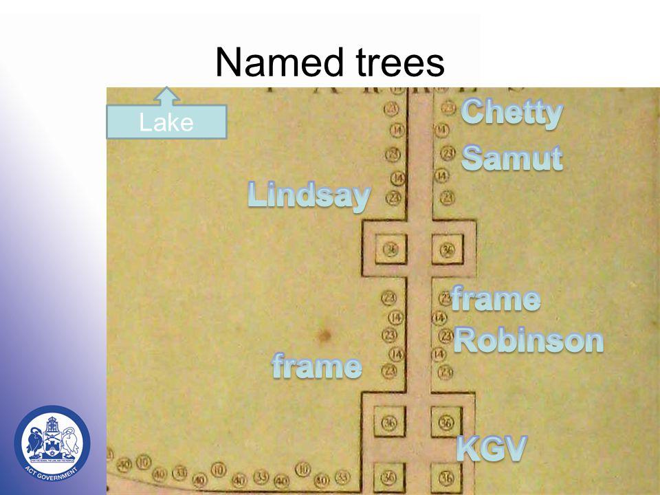 Named trees Lake