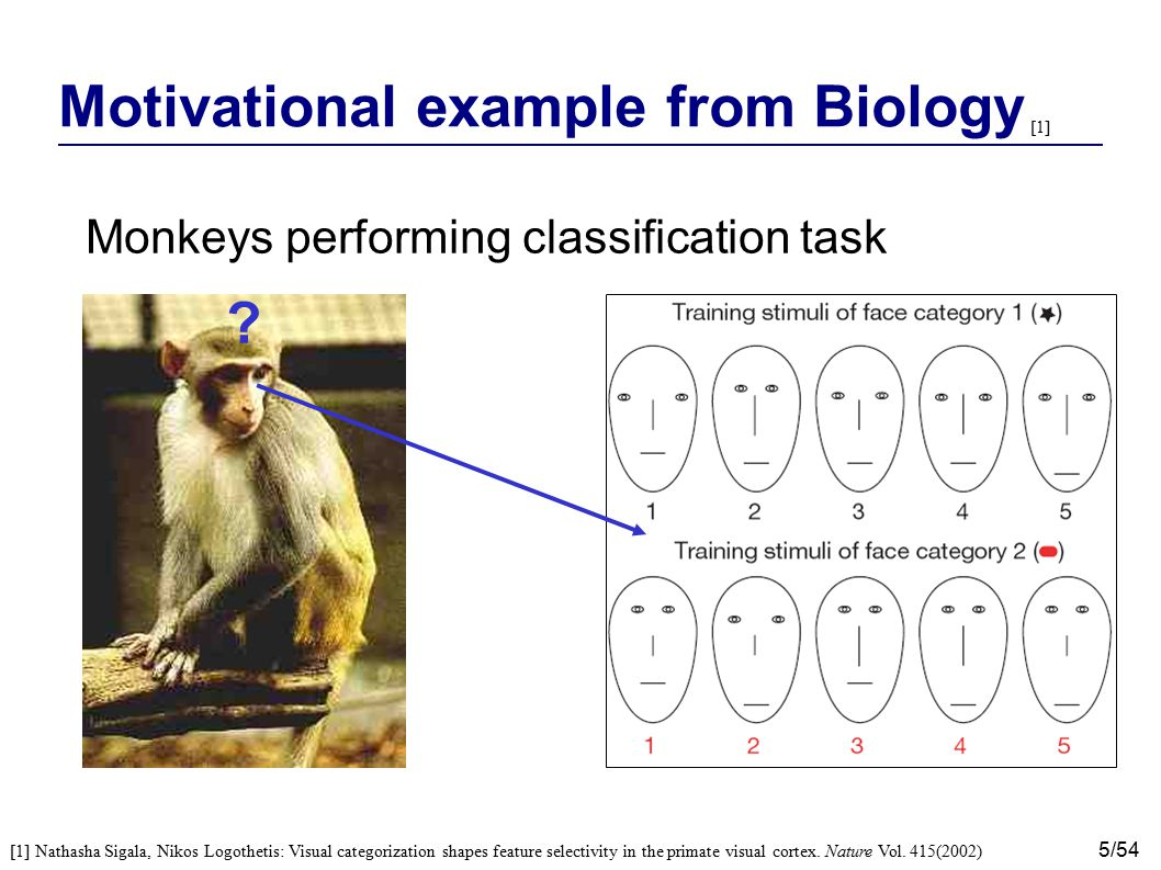 6/54 Motivational example from Biology Monkeys performing classification task Diagnostic features: - Eye separation - Eye height Non-Diagnostic features: - Mouth height - Nose length