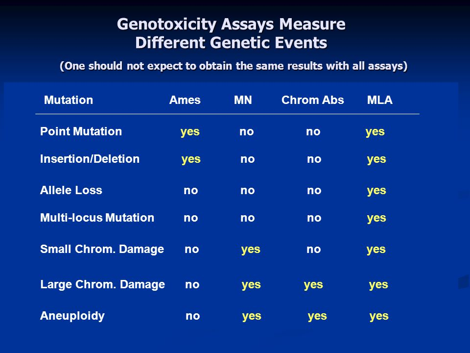 Genotoxicity Assays Measure Different Genetic Events (One should not expect to obtain the same results with all assays) MutationAmes MN Chrom Abs MLA Point Mutation yes no no yes Insertion/Deletion yes no no yes Allele Loss no no no yes Multi-locus Mutation no no no yes Small Chrom.