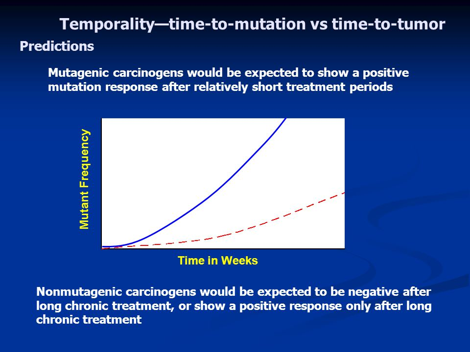 Mutagenic carcinogens would be expected to show a positive mutation response after relatively short treatment periods Nonmutagenic carcinogens would be expected to be negative after long chronic treatment, or show a positive response only after long chronic treatment Temporality—time-to-mutation vs time-to-tumor Time in Weeks Mutant Frequency Predictions