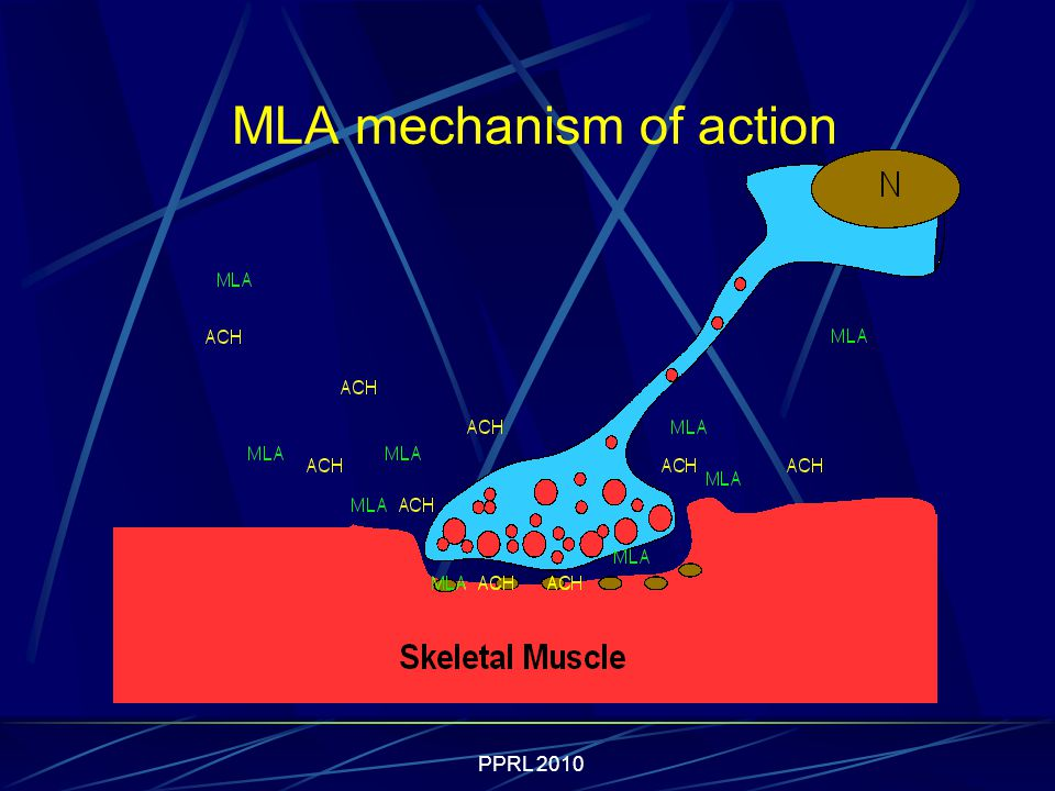PPRL 2010 MLA mechanism of action