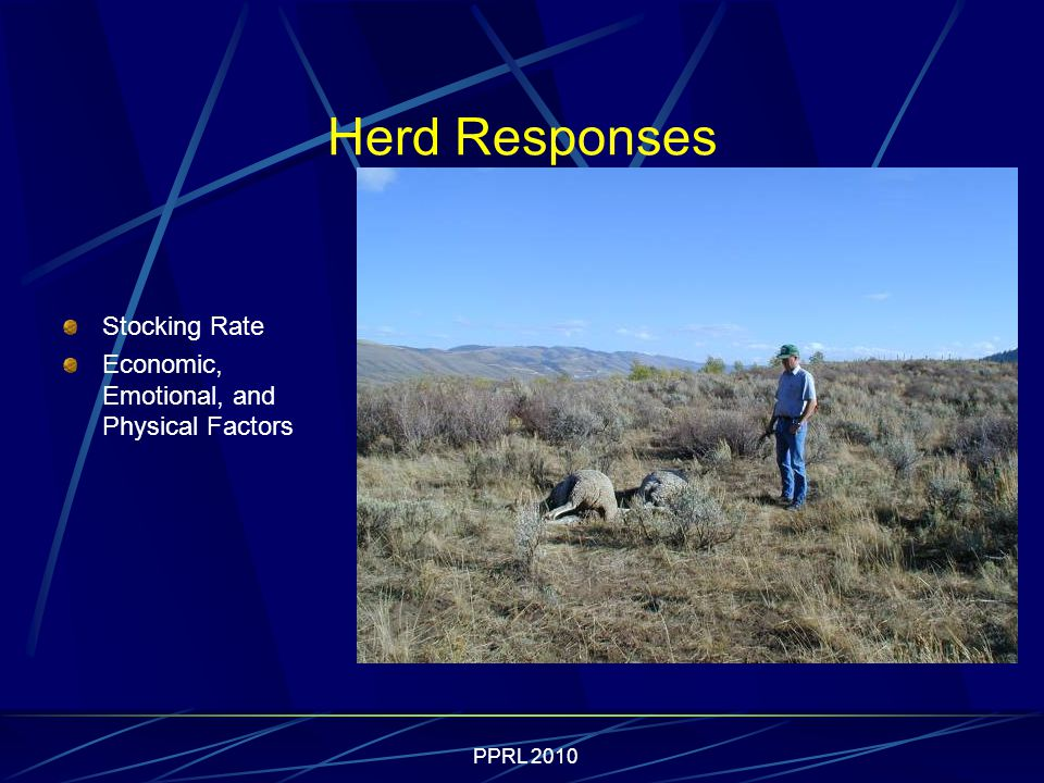 PPRL 2010 Herd Responses Stocking Rate Economic, Emotional, and Physical Factors