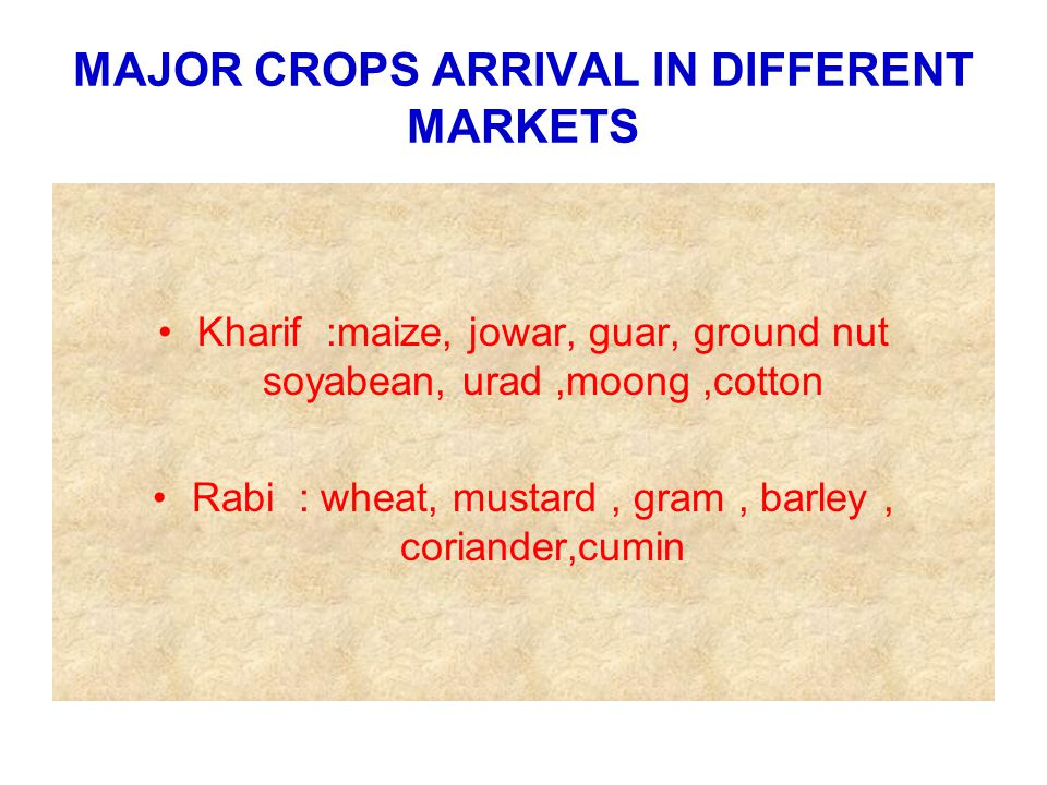 MAJOR CROPS ARRIVAL IN DIFFERENT MARKETS Kharif :maize, jowar, guar, ground nut soyabean, urad,moong,cotton Rabi : wheat, mustard, gram, barley, coriander,cumin
