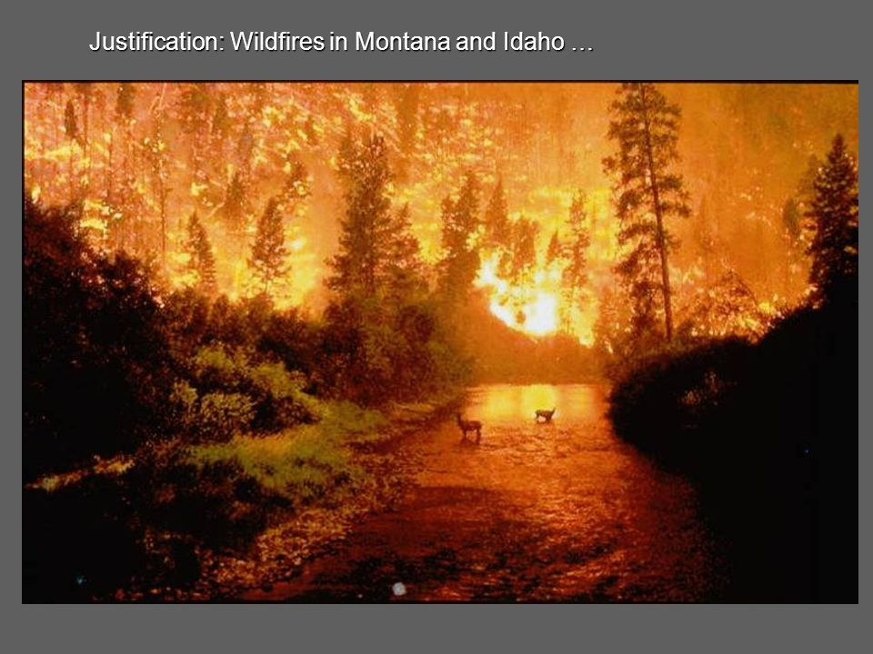 Justification: Wildfires in Florida and Georgia …