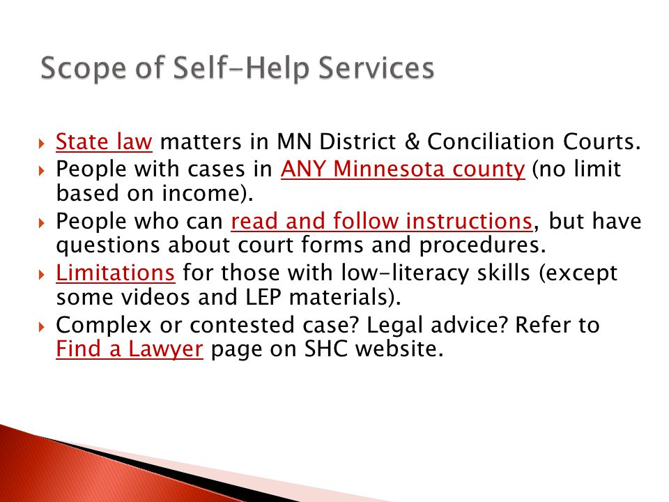 Scope of Self-Help Services  State law matters in MN District & Conciliation Courts.