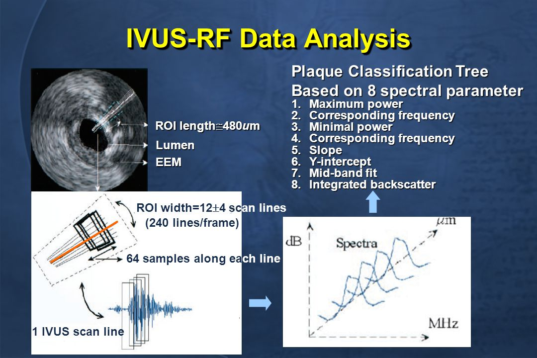 IVUS-RF Data Analysis ROI length  480um Lumen EEM ROI width=12  4 scan lines 64 samples along each line (240 lines/frame) 1 IVUS scan line Plaque Classification Tree Based on 8 spectral parameter 1.Maximum power 2.Corresponding frequency 3.Minimal power 4.Corresponding frequency 5.Slope 6.Y-intercept 7.Mid-band fit 8.Integrated backscatter