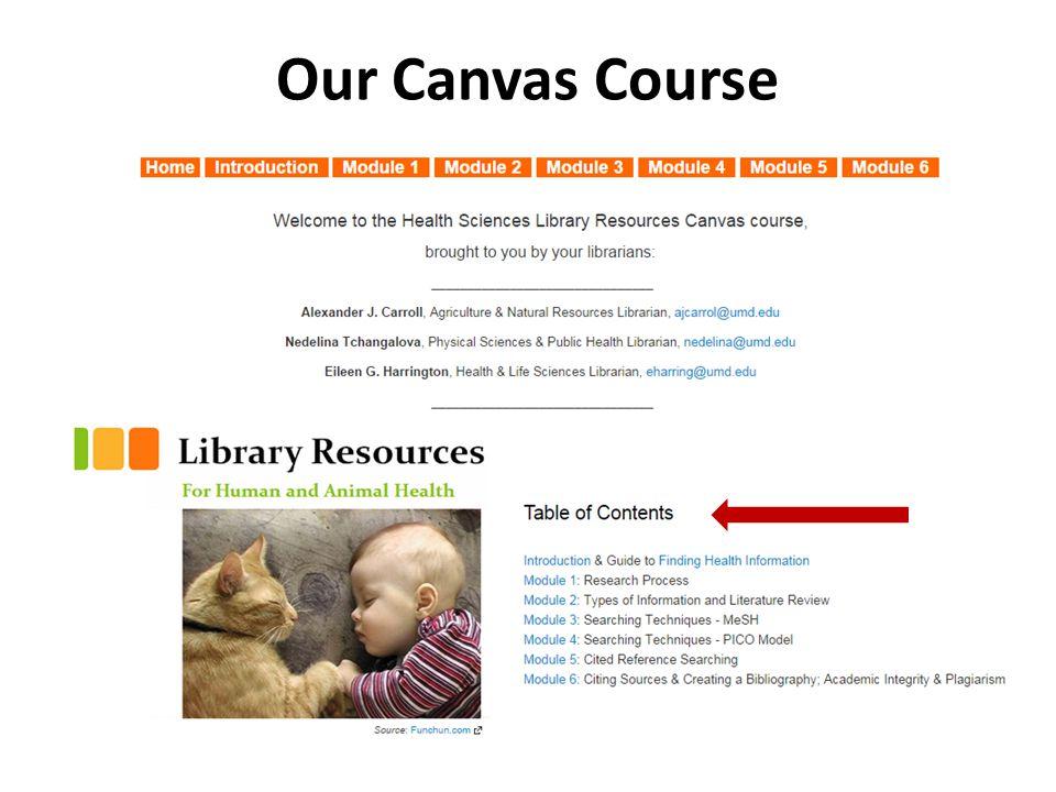 Our Canvas Course
