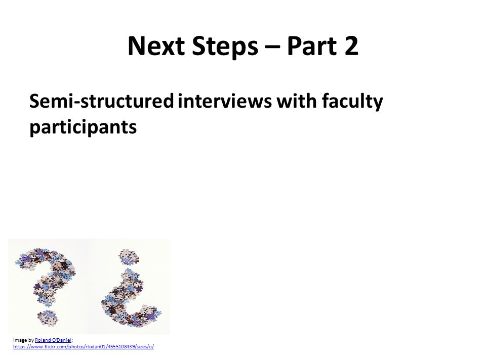 Next Steps – Part 2 Semi-structured interviews with faculty participants Image by Roland O Daniel:Roland O Daniel https://www.flickr.com/photos/rlodan01/4555108439/sizes/o/