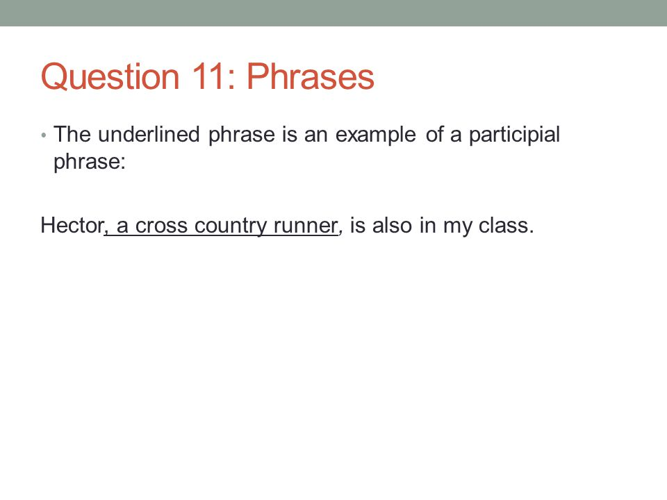 Question 11: Phrases The underlined phrase is an example of a participial phrase: Hector, a cross country runner, is also in my class.